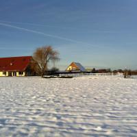 Reitplatz im Winter
